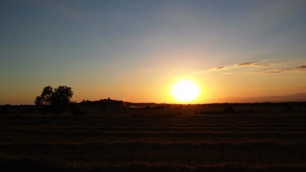 11.07.2014 Cau el sol  L'Ametlla de Segarra -  Ramon Sunyer