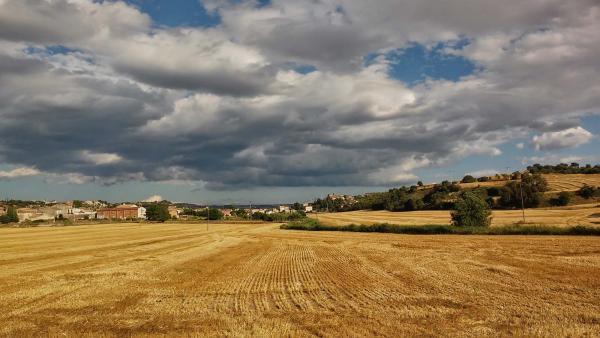 12.07.2014 vall d'Ondara  Sant Antolí i Vilanova -  Ramon Sunyer