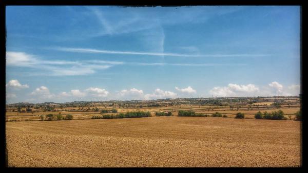 27.07.2014 La Plana  Guissona -  Ramon Sunyer