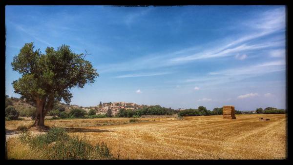 27.07.2014 El poble  La Prenyanosa -  Ramon Sunyer