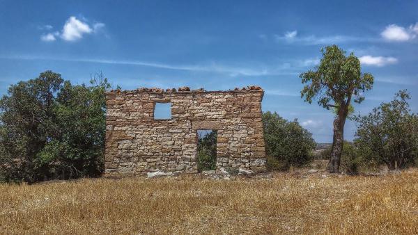 28.07.2014   Gra -  Ramon Sunyer