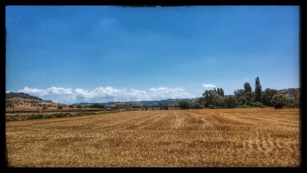 27.07.2014 Vall del Sió  Malgrat -  Ramon Sunyer