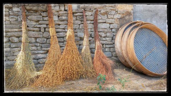 09.08.2014 escombres graneres i porgadors  Sant Antolí i Vilanova -  Ramon Sunyer
