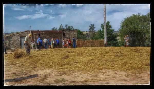 09.08.2014 ventant la palla a l'era  Sant Antolí i Vilanova -  Ramon Sunyer
