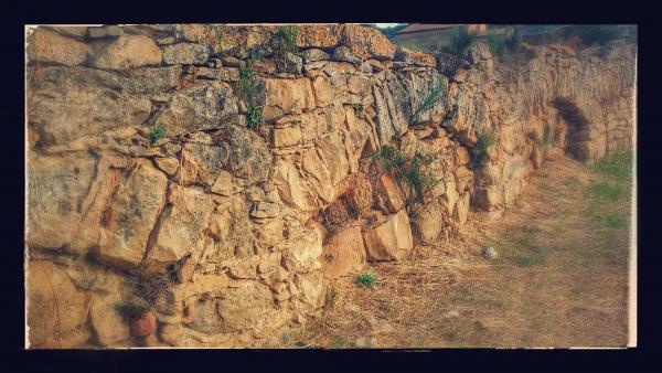 08.09.2014 aqüeducte dels frares, canalitzava l'aigua al convent  Torà -  Ramon Sunyer