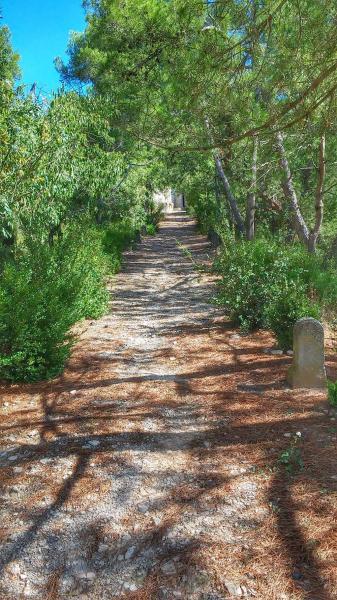 22.09.2014 camí  El Far -  Ramon Sunyer