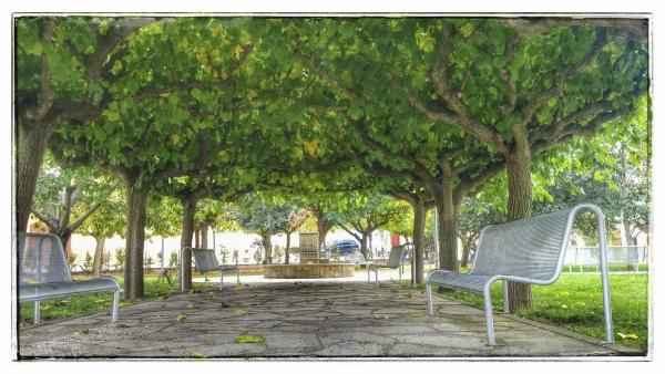 03.11.2014 Parc  Massoteres -  Ramon Sunyer