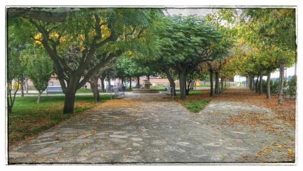 02.11.2014 Plaça de l'església  Massoteres -  Ramon Sunyer