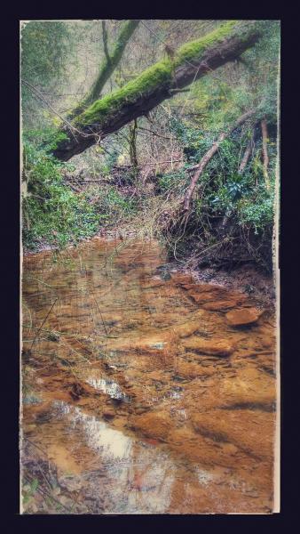 11.11.2014 El riu Llanera  Llanera -  Ramon Sunyer
