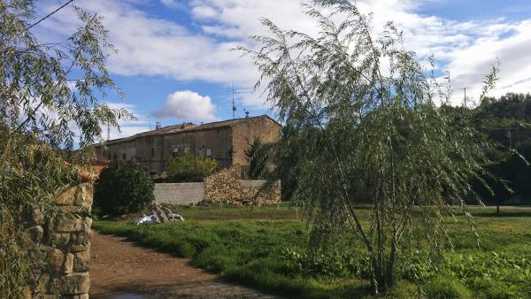16.11.2014 Detall poble  Sant Pere de l'Arç -  Ramon Sunyer