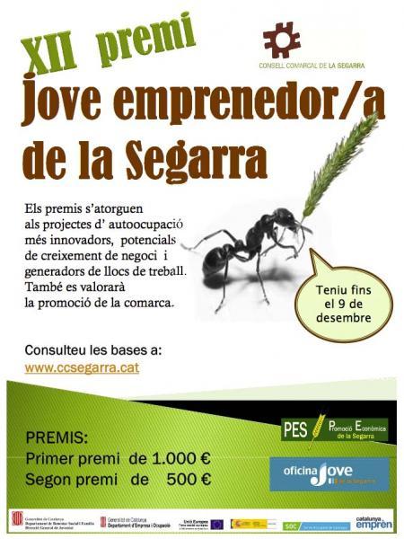El Consell Comarcal convoca la 12a edició del premi jove emprenedor/a de la Segarra -