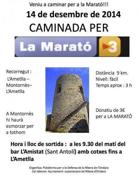 cartell Vine a caminar per la Marató