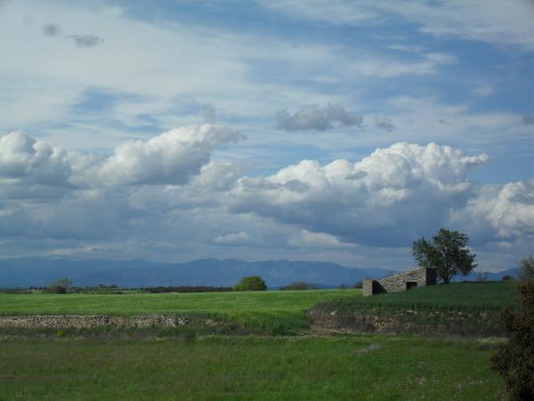 12.12.2014 Primavera als Plans de Gospí amb la cabana de cal Caterí i les muntanyes de fons.  Gospí -  Sílvia Peribáñez