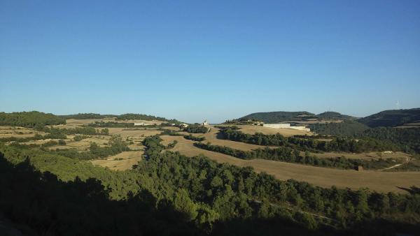 16.08.2014 Paisatge  L'Albió -  Ramon Sunyer