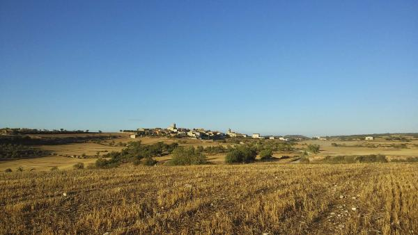 16.08.2014 Paisatge  L'Ametlla de Segarra -  Ramon Sunyer