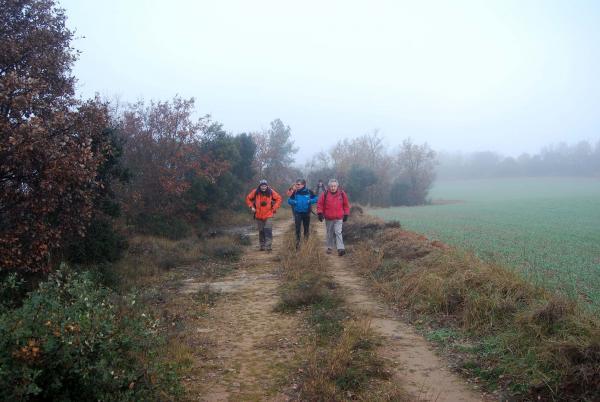 21.12.2014 anant fent camí  Llanera -  Ramon Sunyer