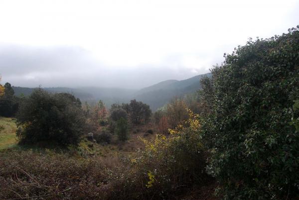 21.12.2014 Vista de la vall  Llanera -  Ramon Sunyer
