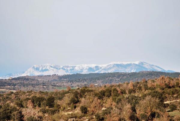 31.01.2015 El Pirineu nevat  Sant Serni -  Ramon Sunyer