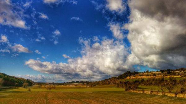 01.02.2015 Paisatge  Pujalt -  Ramon Sunyerr