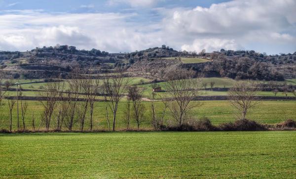 21.02.2015 Paisatge  Sant Pere dels Arquells -  Ramon Sunyer