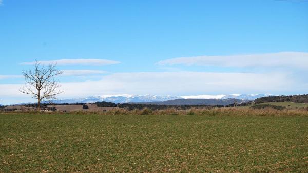 02.02.2015 Paisatge hivern  Calaf -  Ramon Sunyer