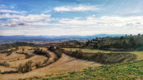 02.03.2015 Paisatge colomí  Montargull -  Ramon Sunyer