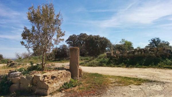 02.04.2015 Paisatge  La Morana -  Ramon Sunyer