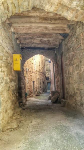 Vila vella  Portals i carrers - Autor Ramon Sunyer (2015)