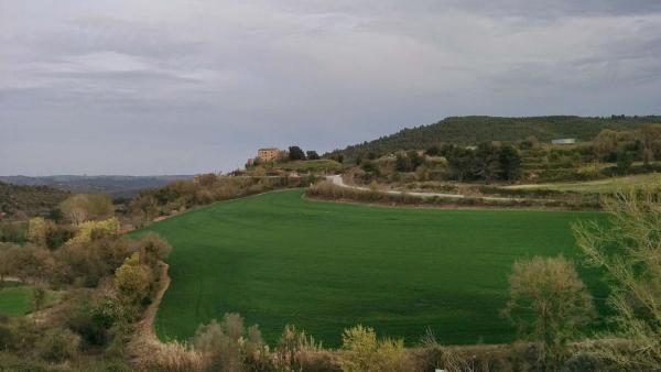 10.04.2015 Paisatge  Veciana -  Ramon Sunyer
