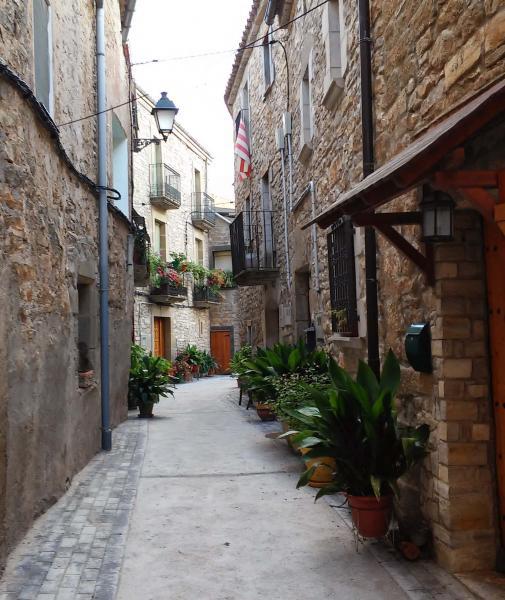 28.08.2014 detall carrer  El Llor -  Ramon Sunyer