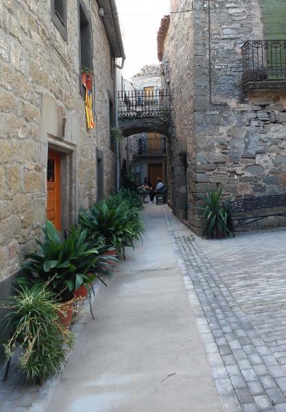 28.08.2014 carrer  El Llor -  Ramon Sunyer