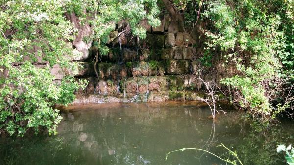 02.05.2015 Peixera al riu Sió  Sedó -  Ramon Sunyer