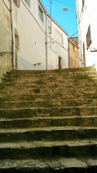 18.05.2015 escales  Montpalau -  Ramon Sunyer