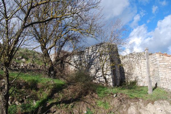 01.02.2015 Restes del castell  Ferran -  Ramon Sunyer