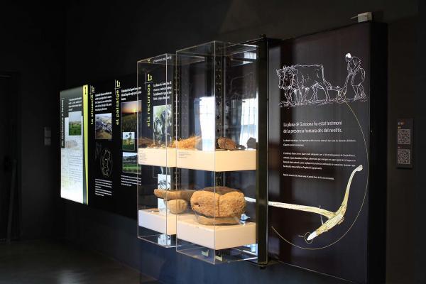 08.06.2015 Museu de Guissona Eduard Camps  Guissona -  Museu Guissona