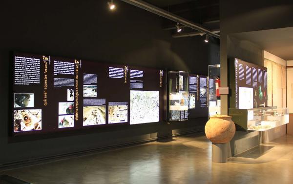 08.06.2015   Guissona -  Museu Guissona