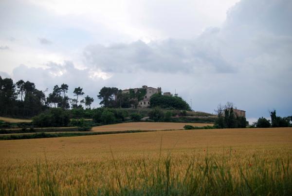 14.06.2015 Paisatge  Biure de Gaià -  Ramon Sunyer
