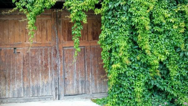 14.06.2015 detall porta  Les Piles -  Ramon Sunyer