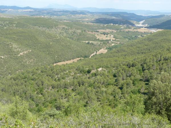 25.06.2015 Panoràmica del curs mig i baix del Torrent de La Coma, des de la Costa dels Marçans  Veciana -  Daniel Espejo Fraga