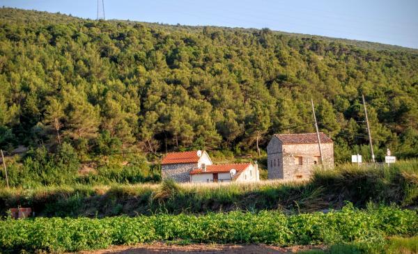 24.06.2015 vista del poble  Vallespinosa -  Ramon Sunyer