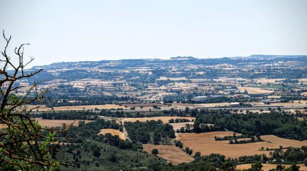 28.06.2015 paisatge  Montlleó -  Ramon Sunyer