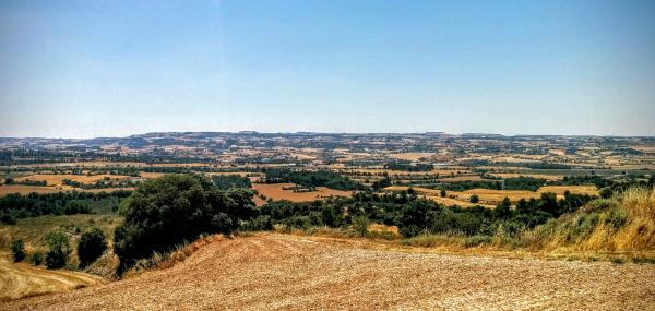 28.06.2015 Paisatge de la vall d'Ondara  Montlleó -  Ramon Sunyer