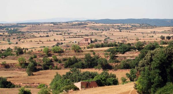 03.07.2015 Paisatge  Els Prats de Rei -  Ramon Sunyer
