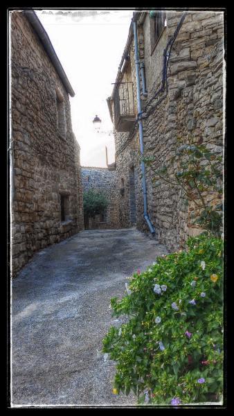 24.08.2014 detall carrer  Gospí -  Ramon Sunyer