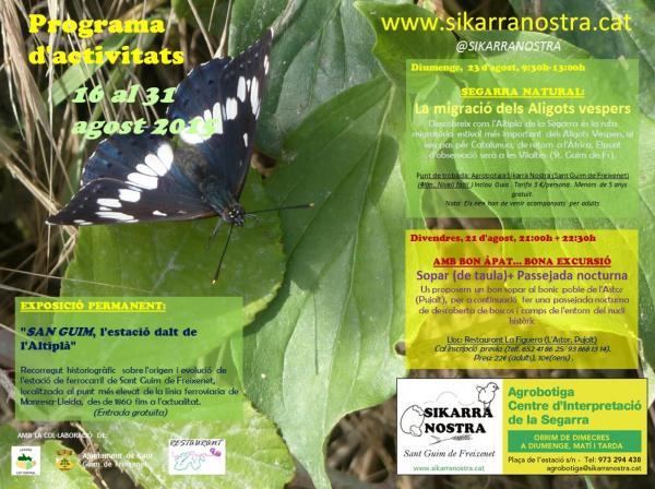 cartell SEGARRA NATURAL: La migració dels Aligots vespers