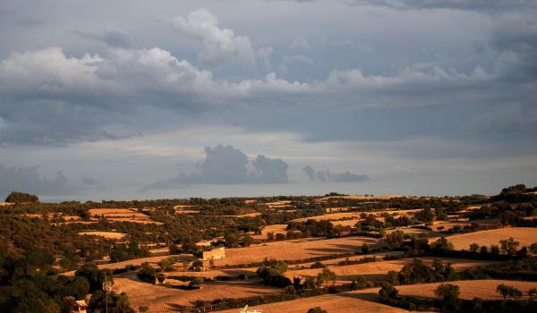 22.08.2015 paisatge  Vilagrasseta -  Ramon Sunyer