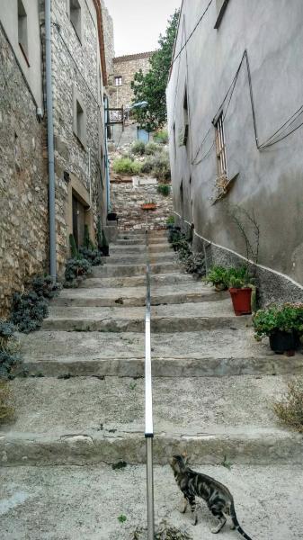 12.09.2015 detall carrer  La Curullada -  Ramon Sunyer