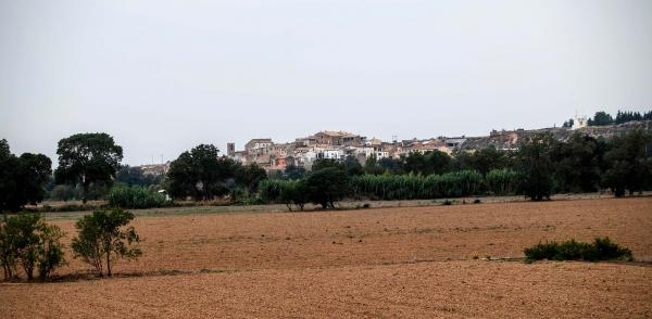 04.10.2015 vista del poble  Sedó -  Ramon Sunyer