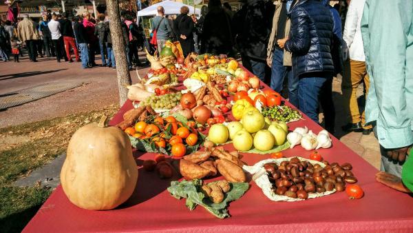 01.11.2015 fruits de tardor  Calaf -  Ramon Sunyer