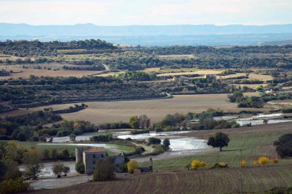 Camps anegats per l'Ondara a Sa Portella -